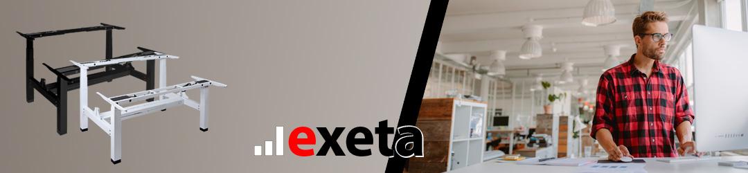 exeta ergoDUO Banner
